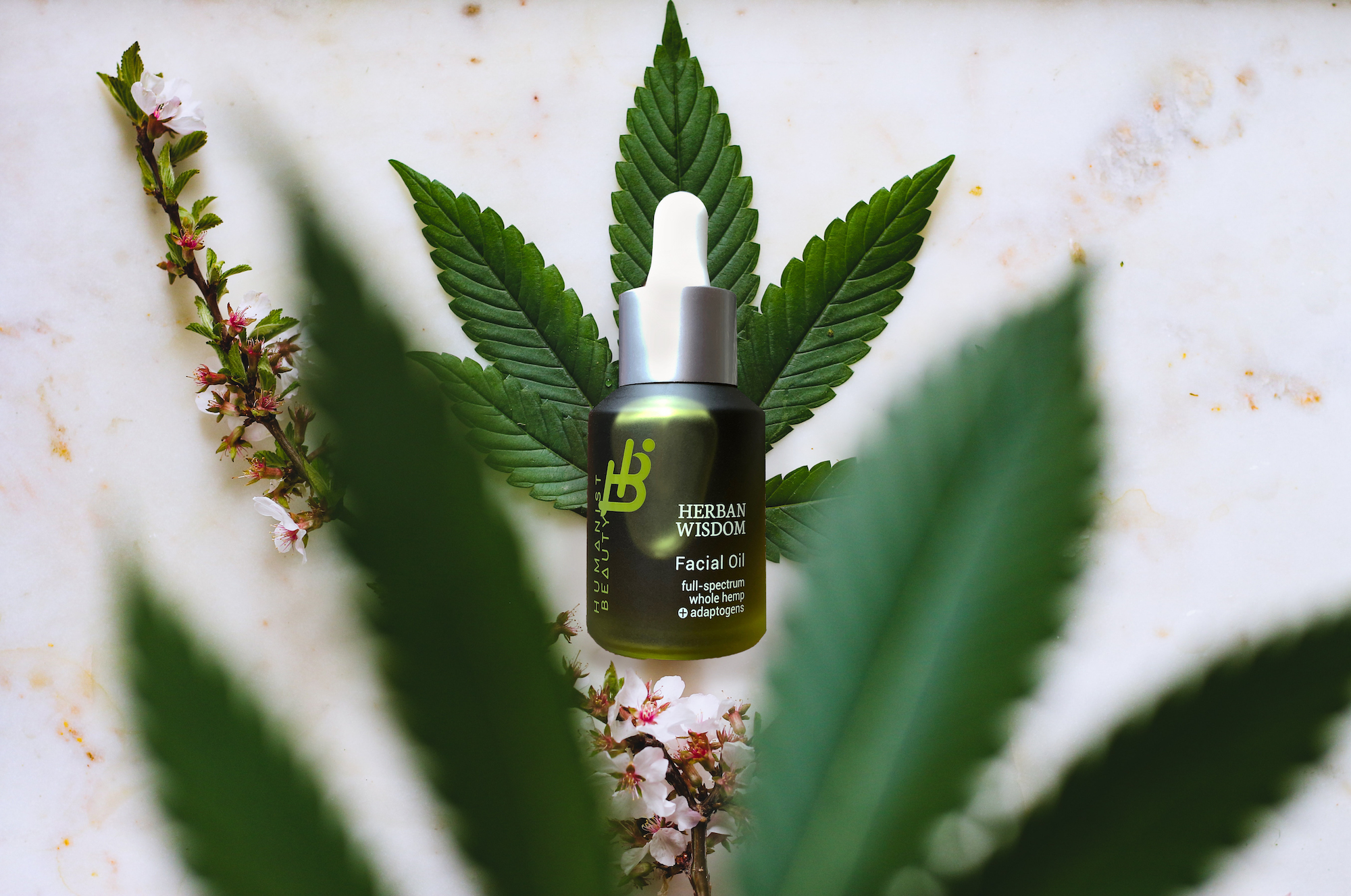 Three Amazing CBD Skin Benefits | Humanist Beauty