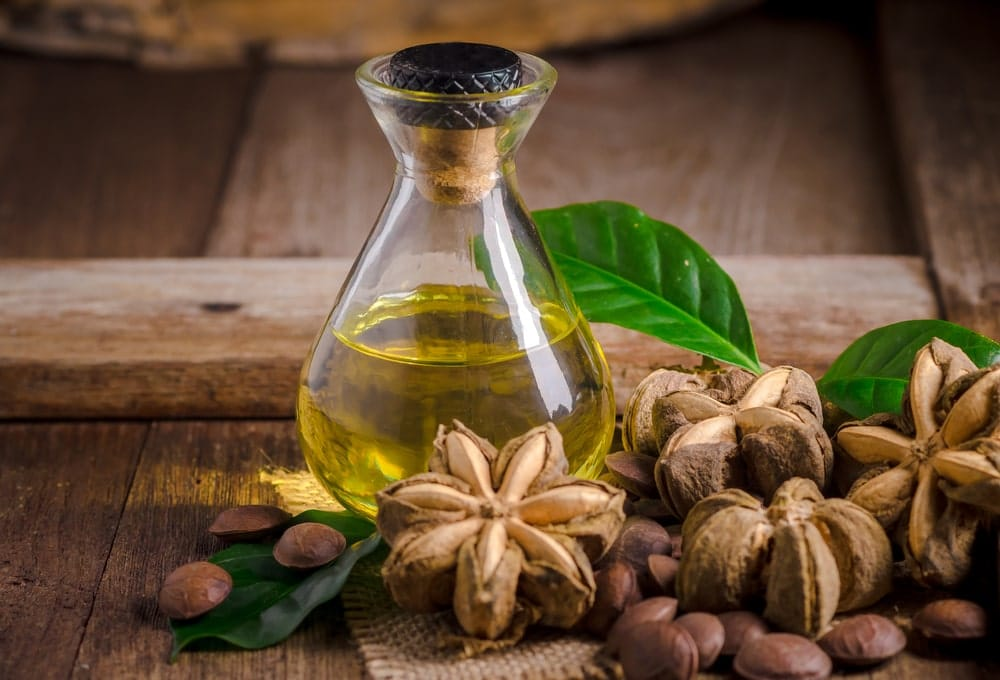 A picture of dried sachi inchi pods and nuts with a bottle of sacha inchi oil