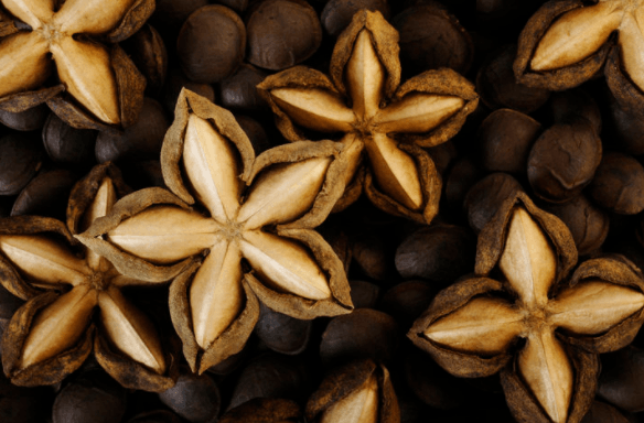 A picture of dried ripened Sacha Inchi seeds
