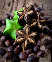 A picture of sacha inchi pods unripened and a cross section of sacha inchi pods ripened and opened sitting atop a mound of dried sacha inchi nut seeds