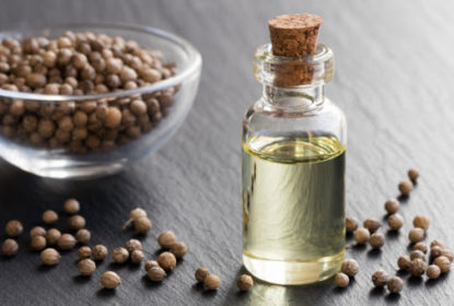 A Bowl of Coriander Seeds and A Bottle of Coriander Seed Oil