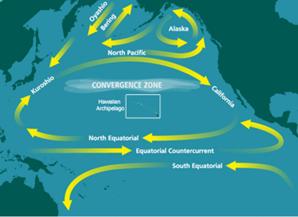 A map of the plastic trash vortex