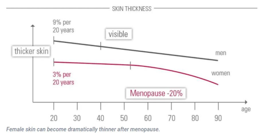 Male and Female Skin Thickness Over Time